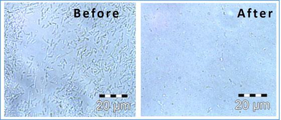 高圧ホモジナイザー 細胞破砕