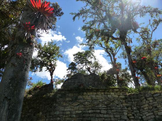 Entre Jungle, montagne et civilisation perdue !
