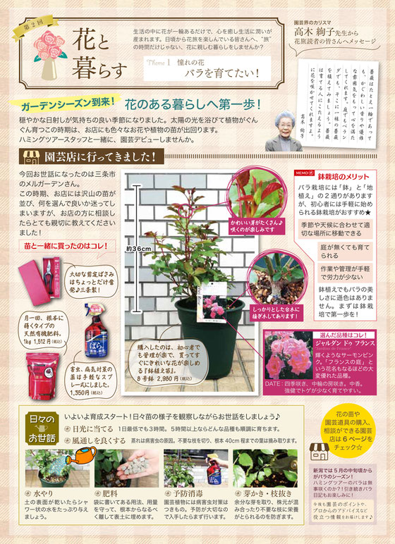花旅特集ページ