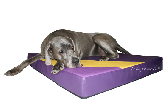 Medizinischer Hundeschlafplatz Lectus pro canibus aus 100% Visko Schaum zum Erhalt der Gesundheit des Bewegungsapparates unserer großen und schweren Hunderassen wie Deutsche Doggen, Landseer, Irischer