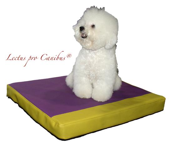 Medizinischer Hundeschlafplatz Lectus pro canibus aus 100% Visko Schaum zum Erhalt der Gesundheit des Bewegungsapparates unserer großen und schweren Hunderassen wie Malteser, Mops und Zergschnauzer