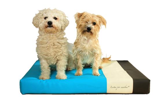 orthopädisches Hundekissen aus 100% Viskoschaum speziell für sehr kleine und leichte Hunderassen von einem Körpergewicht von unter 10kg