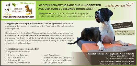 Medizinisch orthopädische Hundebetten Lectus pro canibus® aus dem Hause Gesunde Hundewelt