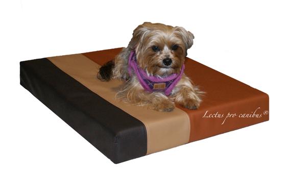 Medizinischer Hundeschlafplatz Lectus pro canibus aus 100% Visko Schaum zum Erhalt der Gesundheit des Bewegungsapparates unserer ganz kleinen Hunderassen / Zwergrassen wie Yorkshire Terrier