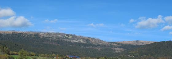 Die Verebnung der Gipfelregion des Plöckenstein-Massivs ist Relikt einer mesozoischen Altfläche.