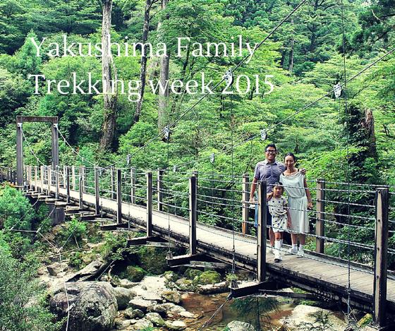 ヤクスギランド,屋久杉,家族,屋久島,もののけの森,貸切ツアー