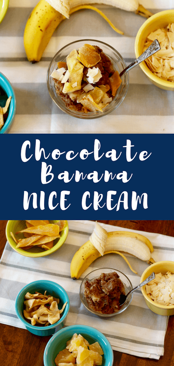 Love nice cream recipes,  ice cream recipes & healthy chocolate recipes? Make this chocolate banana nice cream, a vegan dessert, with a blender. #nicecream #icecream #fruitrecipe #chocolaterecipe #veganrecipe #dessert #banana #foodprocessor