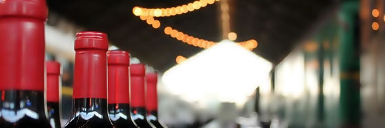 Guía Peñín ギア・ペニン、第15回 Salón de los Mejores Vinos de España スペイン優良ワイン試飲会の開催 (www.vinetur.com)