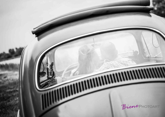 Kennelernen,Fotograf Bremen,Fotograf Stuhr, Fotograf Oldenburg,Fotograf Syke,Fotograf Delmenhorst,Hochzeit Bremen,Hochzeit Oldenburg,Hochzeit Delmenhorst,Hochzeit Diepholz,Sabine Lange,Biene 12