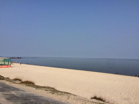 Westerland.haus - Hörnum auf Sylt: Strand und Hafen