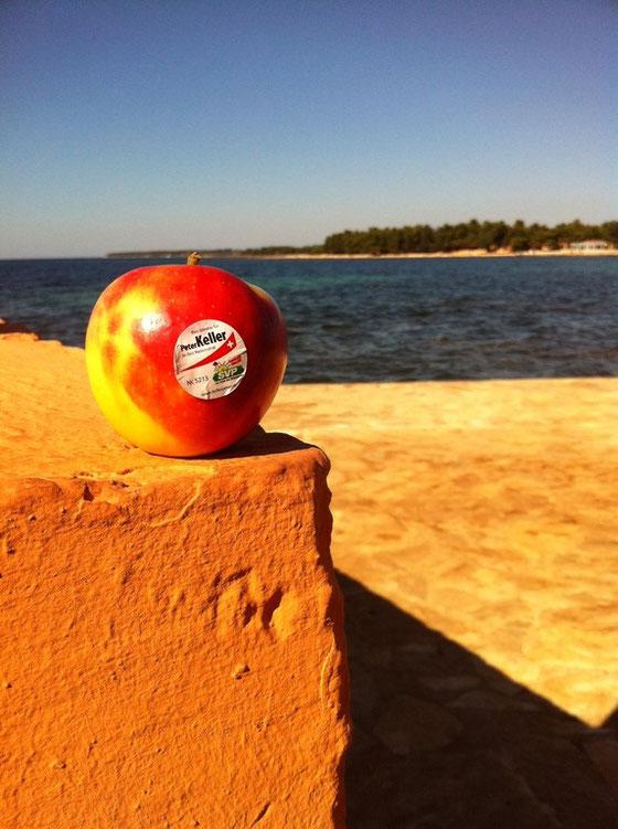 Apfel auf Reisen