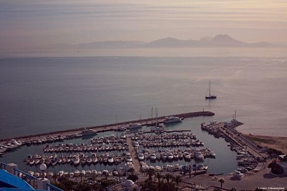 Vista del puerto de Sidi Boud Said. Túnez