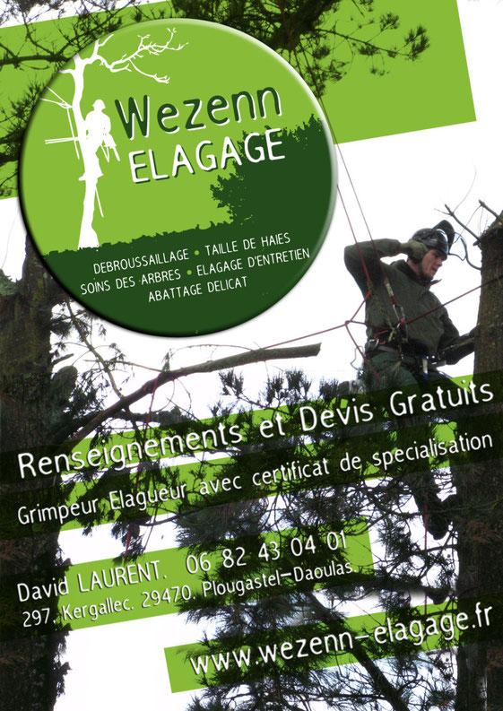 wezenn elagage devis gratuit brest plougastel taille arbre haie grimpeur élagueur david laurent entretien espace vert BMO