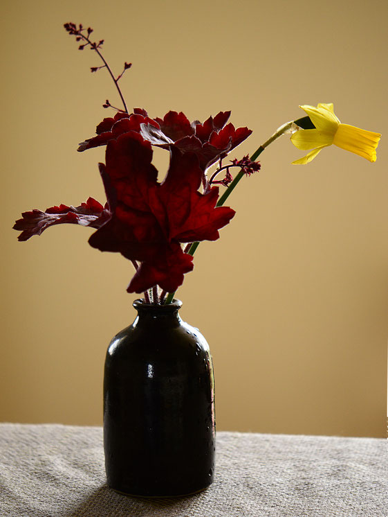 in a vase on monday, heuchera and narcissus