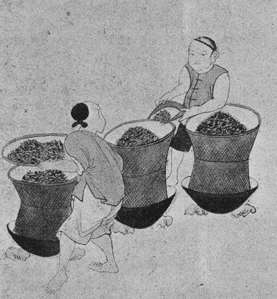 La torréfaction du thé. D'après une estampe chinoise.