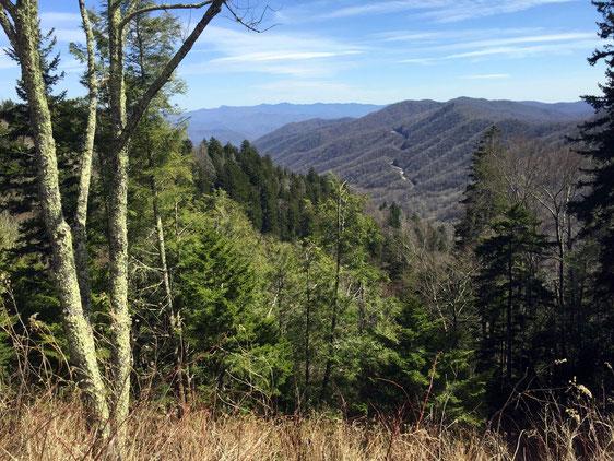Blick vom Newfound Gap Aussichtspunkt