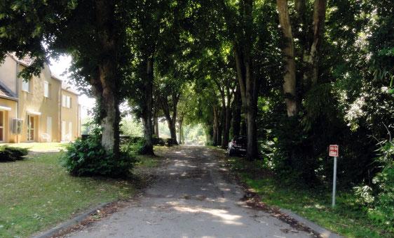 Montret - Allée des Tilleuls, cimetière