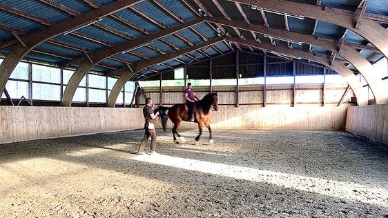 Dem Pferd Raum für Entwicklung geben, fühlen und nachspüren. Einhändig geritten im Galopp geht die Energie von meiner Körpermitte aus, die Hand begrenzt lediglich in einem flexiblen Rahmen