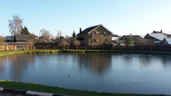Der Teich war zugefroren