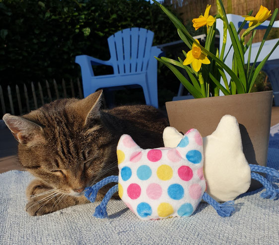 Catnip Kissen selber nähen