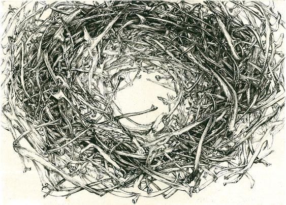 「アバラ」 180×250mm 銅版/雁皮刷り