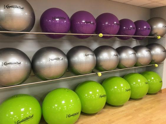 Unsere Pezzi-Bälle für Wirbelsäulengymnastik, Rehasport und Pilates