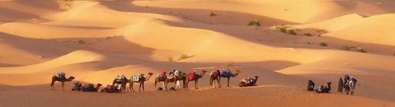 méharée, caravane, désert, dunes, trekking, randonnée, rando, trek, bivouac, ouarzazate, Marrakech, maroc, circuit, séjour, voyage
