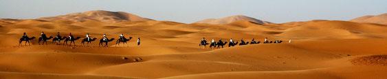 méharée, marrakech, ouarzazate, bivouac, randonnée, rando, trek, randonnee, trekking,sud, maroc,  désert, dunes, bivouac, meharee de charme
