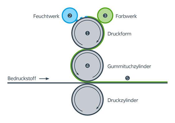 Schematische Abbildung Offsetdruck – SATZDRUCK - Offset-Druckerei NRW