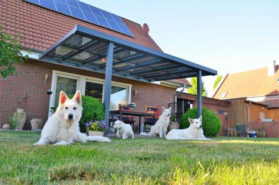 Alu Solarterrassendach in Hannover