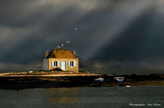 Bruxellois, passionné de photographies depuis près de 40 ans, Guy vous présente un éventail de ses travaux. Il aborde tous les sujets en fonction des saisons et opportunités qui se présentent à lui, mais reste plus s