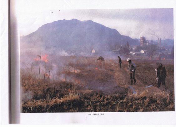 1988年2月・野焼き、寺坂
