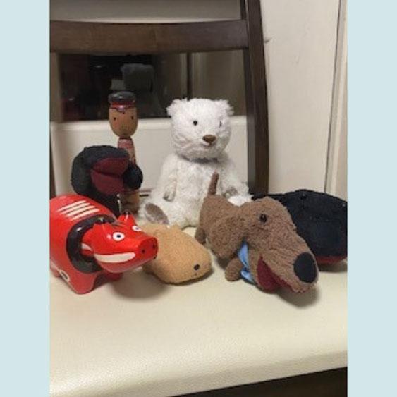 fairysaddle teddybear panchifriend