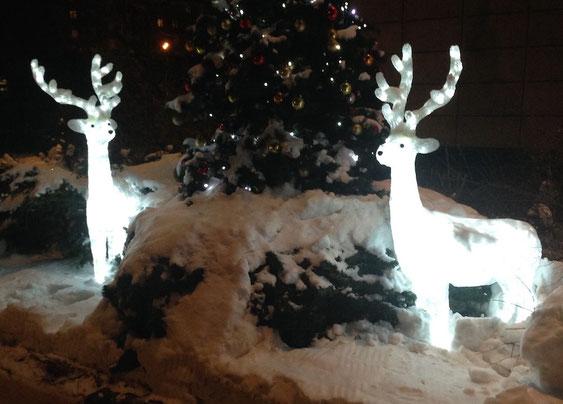 Weihnachtsdekoration vor unserem Hotel