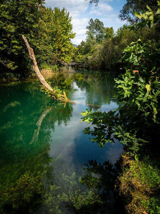 Aufgenommen bei einer Flusswanderung am Livenza (Friaul)