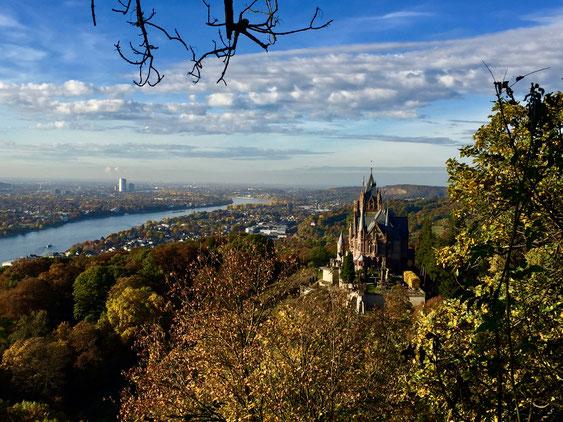 Bonn Rheintal Sehenswürdigkeiten Deutschland Bonn am Rhein