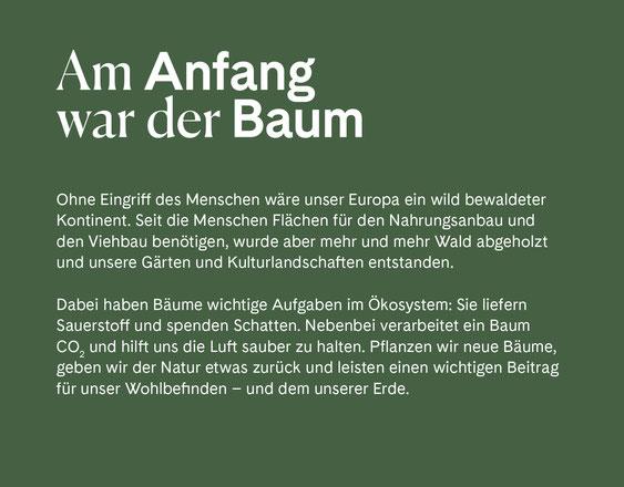 Wienss Innenausbau GmbH - Innenausbau, Objektbau, Museumsbau - hier: Gartenmuseum Lennestadt - www.wienss-innenausbau.de - Gartenalphabet A - wie Anfang