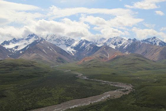 Sublimes paysages de Denali NP
