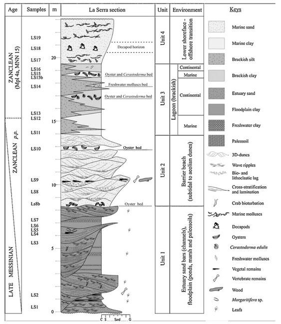 Stratigrafia della cava La Serra. Immagine tratta dal documento citato nel testo.