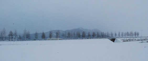 今朝の文殊山。