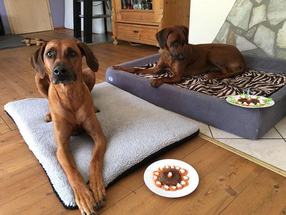 Mama Pebbles hat am Geburtstagsfrühstück natürlich sehr gerne teilgenommen....