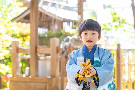 武蔵野八幡宮 七五三 出張撮影 出張カメラマン こども