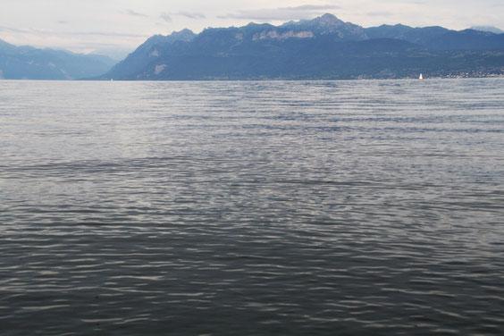 Lac Léman et Alpes