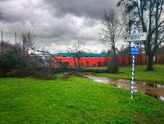 31/3/2015 - Ganz schön stürmischer Saisonbeginn. Dem Clubhaus ist zum Glück nichts passiert.