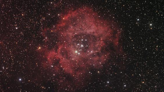NGC 2244 i maglica Rozeta