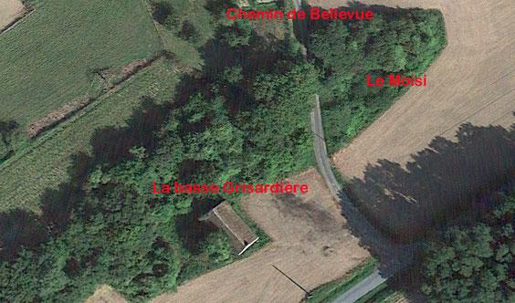 Sur cette vue aérienne prise sur Google Earth nous avons la basse Grisardière et le Moisi de chaque côté du chemin conduisant à Bellevue et Bel Air.