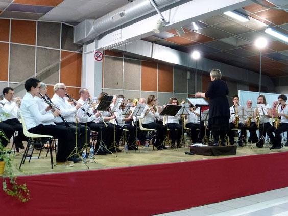 Le nouvel ensemble lors du concert du 11 novembre 2013 à St Christophe
