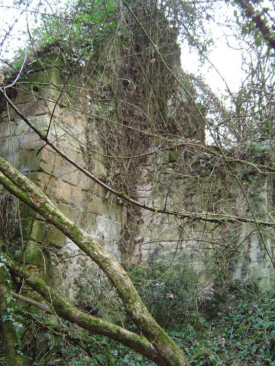 Dans le bois on découvre quelques bâtiments en ruines.