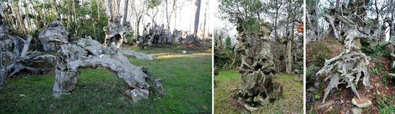 quelques sculptures isolées