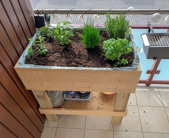 Fertiges Hochbeet auf einem Balkon mit Erde und Kräutern und Gemüse bepflanzt